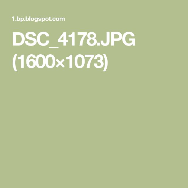 DSC_4178.JPG (1600×1073)