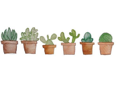 Gallery For > Transparent Cactus Tumblr                              …