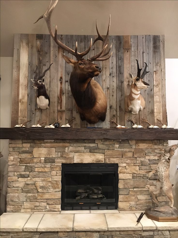 Reclaimed lumber from an old fence makes the perfect statement for a mantle in a trophy room! #reclaimed #lumber #reclaimedlumber #rustic #lumber #rusticlumber #trophyroom