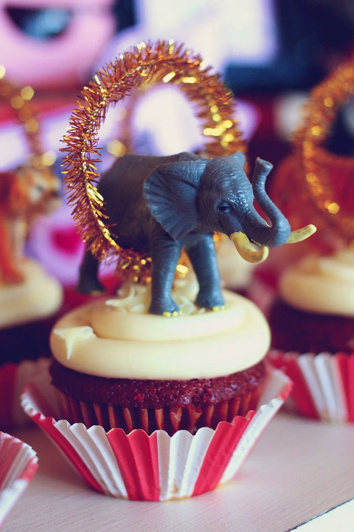 DECORATION: Since when did elephants go through burning rings?