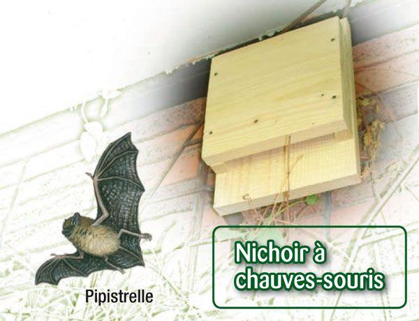 19 best images about nichoirs pour chauves souris on. Black Bedroom Furniture Sets. Home Design Ideas