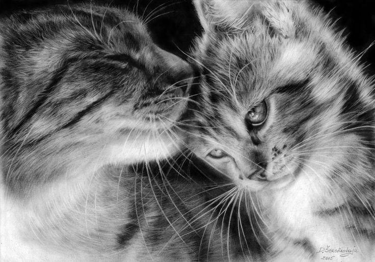 "Danguole Serstinskaja ~ ""Mom Cat And Her Kitten"" - Oil Painting on Bristol Paper 2015                                                                           Photoréalisme, Portraiture, Réalisme, Papier, Animaux, Noir et blanc, Chats, cats, cat, kitty, cat and kittens, feline, feline art, black and white, oild dry brush, photo-realism, best painting, best cat painting"