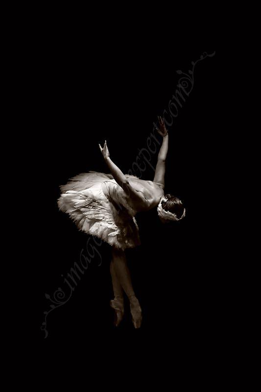 Artistic Ballet Photos - Ballerina, Ballett Fotos -  Ballerina, Artistique photos de ballet - Ballerine, Fotografii artistice balet - balerina,  www.imagesoundexpert.com