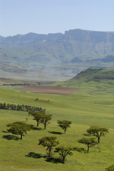 Drakensberg, Kwazulu-Natal, South Africa