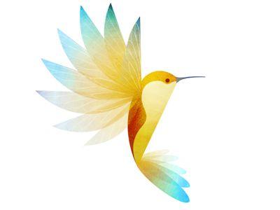 Hummingbird Shot #illustration #inspiration #design #dribbble