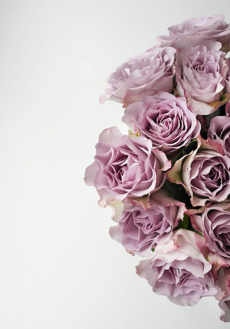 Interior styling - beautiful roses roser - blomster Lyserød - pink Details