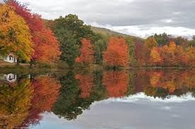 Happy First Day of Fall - Google Search
