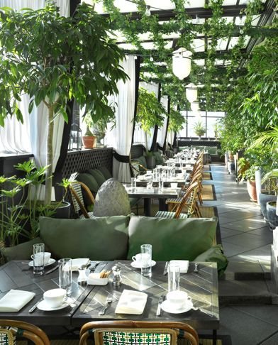 Gramercy Terrace rooftop restaurant, NYC...I like the use of greenery as shade for summer