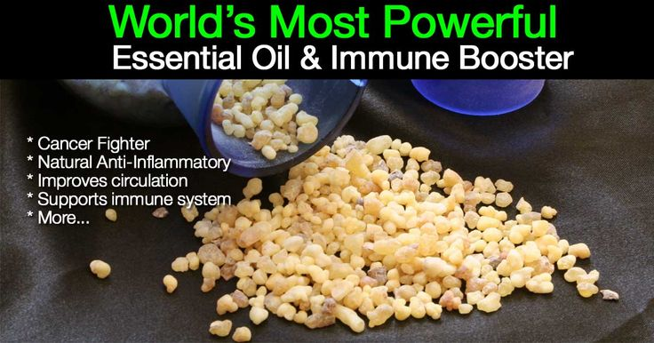 Frankincense is also called olibanum and has an incredible history, dating back over 5000 years. Many have heard of frankincense oil referenced in the Bible.  What are the main benefits of frankincense essential oil and how can you to use it to benefit your health?  Being a natural immune booster, frankincense was the number one thing used as medicine, back in the time of Christ and thousands of years earlier.