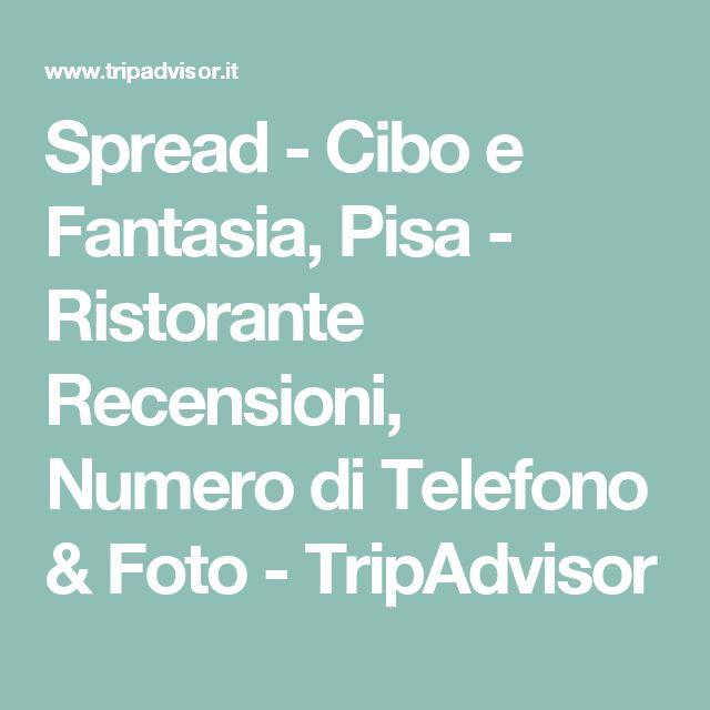 Spread - Cibo e Fantasia, Pisa - Ristorante Recensioni, Numero di Telefono & Foto - TripAdvisor