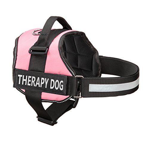 B Bc Dfef Ee Fb on Industrial Service Dog Puppy Vest