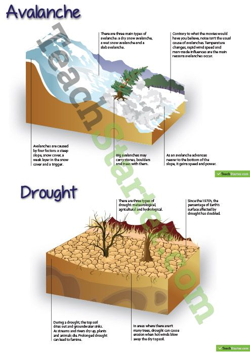 Natural Disaster Posters - Information | Teaching Resources - Teach Starter
