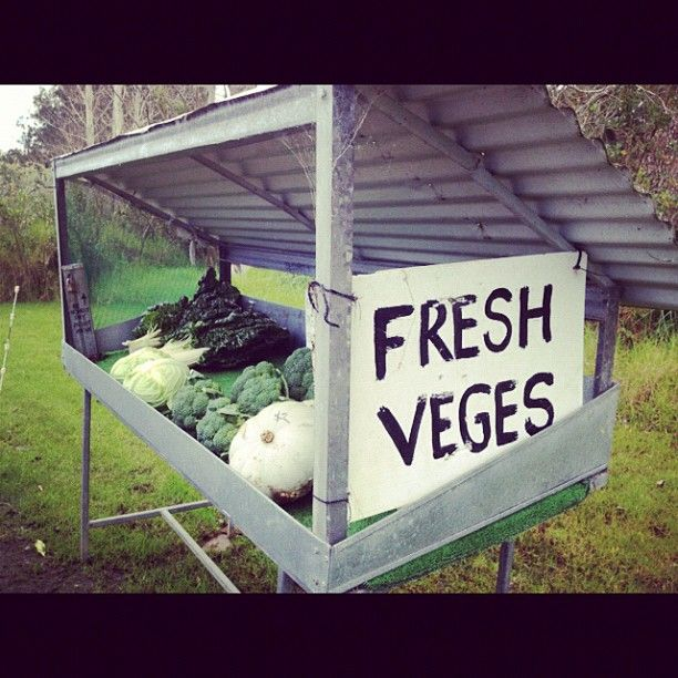Honesty box payment system in the middle of nowhere :) Veges shopping New Zealand style.