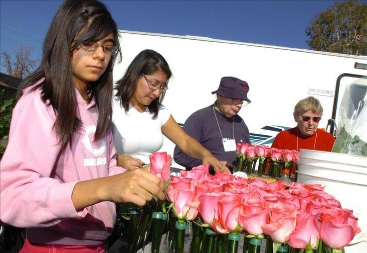 """Los Ángeles, 28 dic (EFEUSA).- Una banda musical de cerca de 300 jóvenes de una escuela secundaria de Veracruz (México), representará a Latinoamérica en el tradicional Desfile de las Rosas que se realizará el 1 de enero en Pasadena, al noreste de Los Ángeles. """"Es un orgullo y es una satisfacción que está banda que …"""
