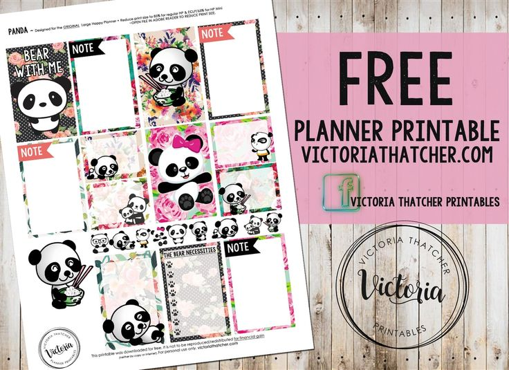 panda planner daily how to write