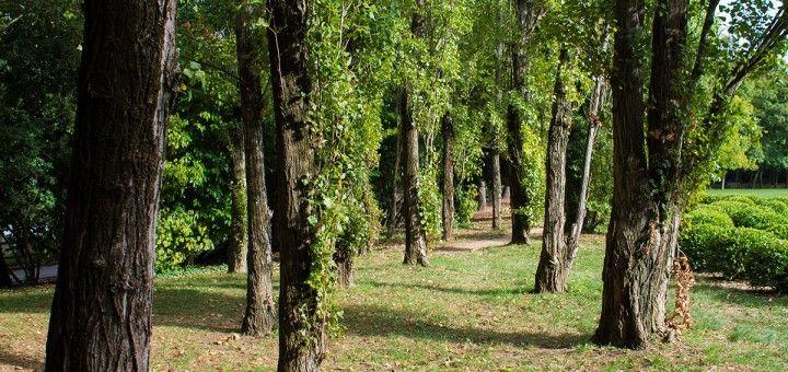 Parco della Resistenza Riccione