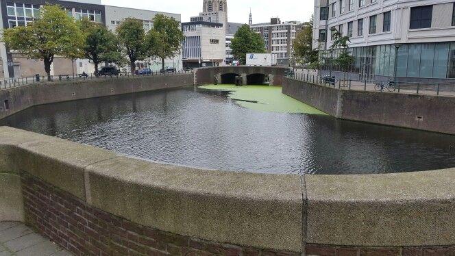 Brug over water, Rotterdam