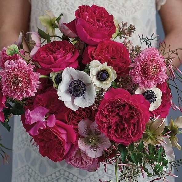 A Lovely Bouquet With David Austin Wedding Roses Kate Combined With Pink Scabiosa Anemone Panda Jasmine Vine And Hellebores Plan Ahead For Your Next Event