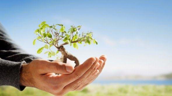BioOrbis: Conceito e definição de Sustentabilidade Ecológica...