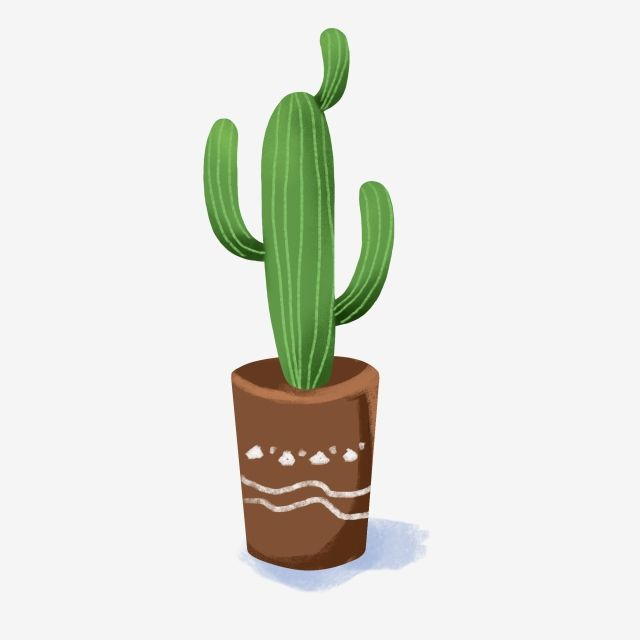 Potted Plant Cactus Pattern Green Plant Cartoon Hand Drawn Little Vertical Bar Png Transparent Clipart Image And Psd File For Free Download Cactus Plants Plants Green Plants