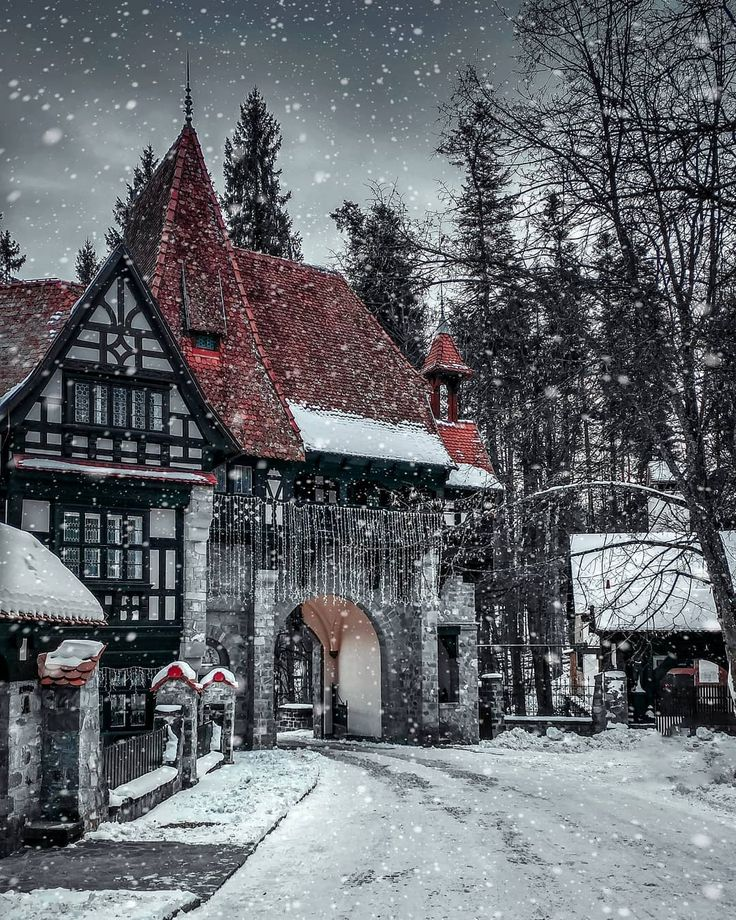 ***Peles Castle (Romania) by ✧ ɢʀᴇɢᴏʀʏ ᴋᴏᴍɴɪɴᴇʟʟɪs ✧ (@gregory.kom) on Instagram