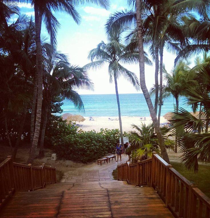 #beachday #sunfun #summerisback #cuba #varadero #melialasamericas #kuba #sunisshining #oceanview #ocean #palms #feelslikeheaven #melia #habana #sun #l4l #t4l #likesforlikes #igers #igersoftheday #photooftheday #picoftheday #instapic #instanature #traveller #travelgram #travel #instatravel #wanderlust #carribean by annewantstotravel