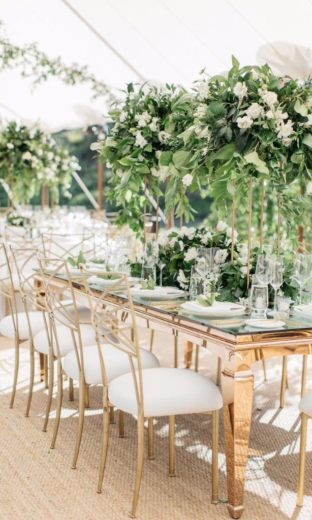 Every Type Of Chair You Can Rent For Your Wedding Ceremony And Reception Wedding Chairs Long Table Wedding Wedding Reception Chairs
