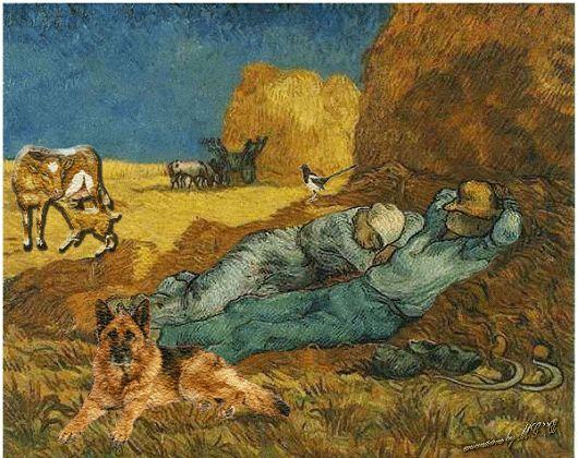 Van-gogh-contadini.gif (530×420)
