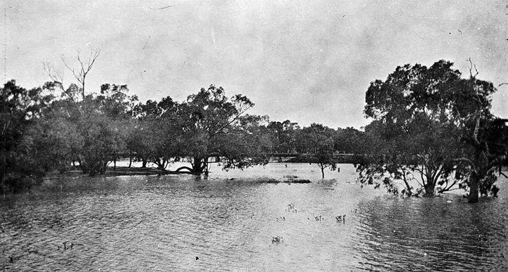 Lake Corrong in flood, Hopetoun, Victoria, circa 1925