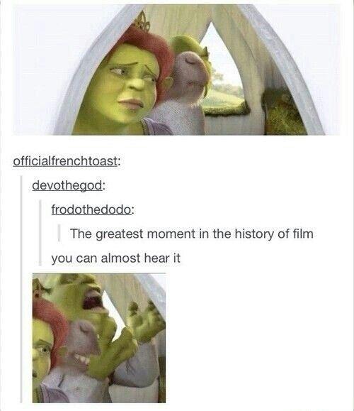 Best Shrek Quotes: Best 25+ Shrek Ideas On Pinterest