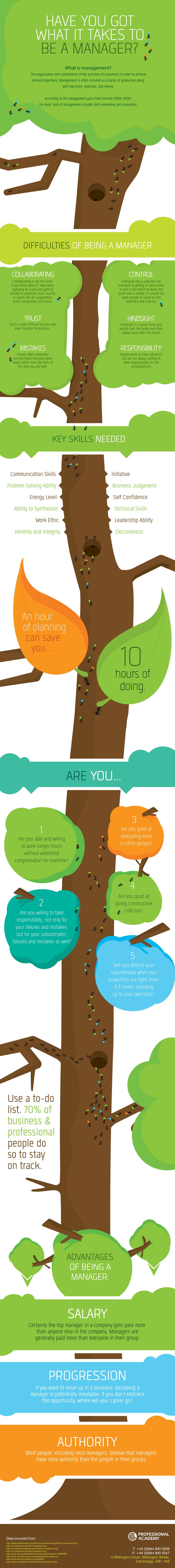 Have you got what it takes to be a manager? Professional Academy Management & Leadership Infographic