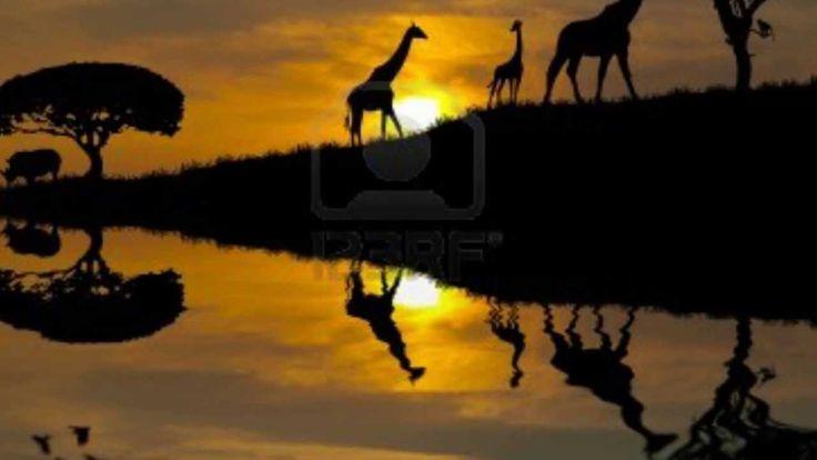 A Swinging Safari by Billy Vaughn