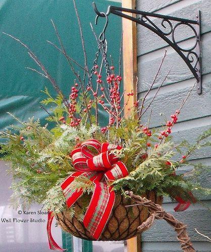 Hanging basket with seasonal greens