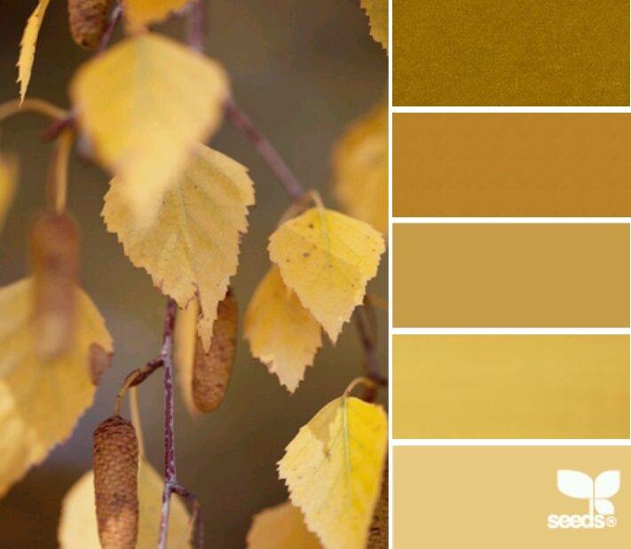 Цвет желтого дуба - трендовый цвет 2015/16г по версии Pantone, Цвет «Желтый дуб» признан одним из немногих оттенков, который положительно воспринимается абсолютно всеми людьми, поднимает настроение и согревает! Ещё больше о цветах на нашем сайте