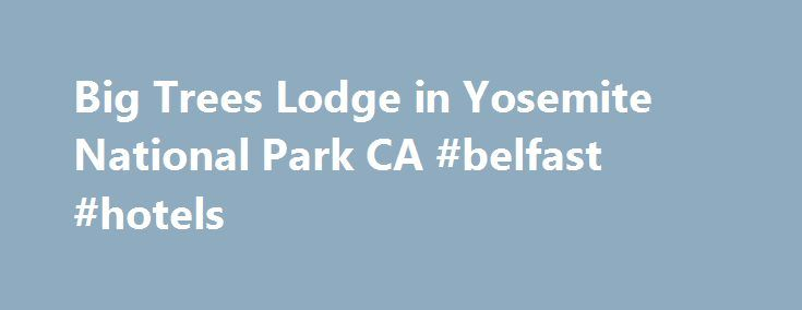Big Trees Lodge in Yosemite National Park CA #belfast #hotels http://hotel.remmont.com/big-trees-lodge-in-yosemite-national-park-ca-belfast-hotels/  #wawona hotel # Big Trees Lodge Operating Seasons: March 25 – November 27, 2016 December 16, 2016 – January 2, 2017 TRAVEL ALERT. New public transportation bus service is available to and from the Big Trees Lodge area via Yosemite Area Regional Transportation System: YARTS Schedule. No shuttle service is available at Big Trees Lodge. […]