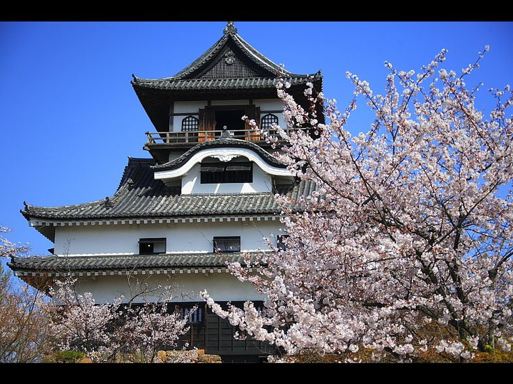 国宝・犬山城  Inuyama-jo Castle