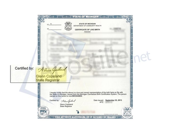 27 best State of Michigan Sample Apostille images on Pinterest - blank divorce decree