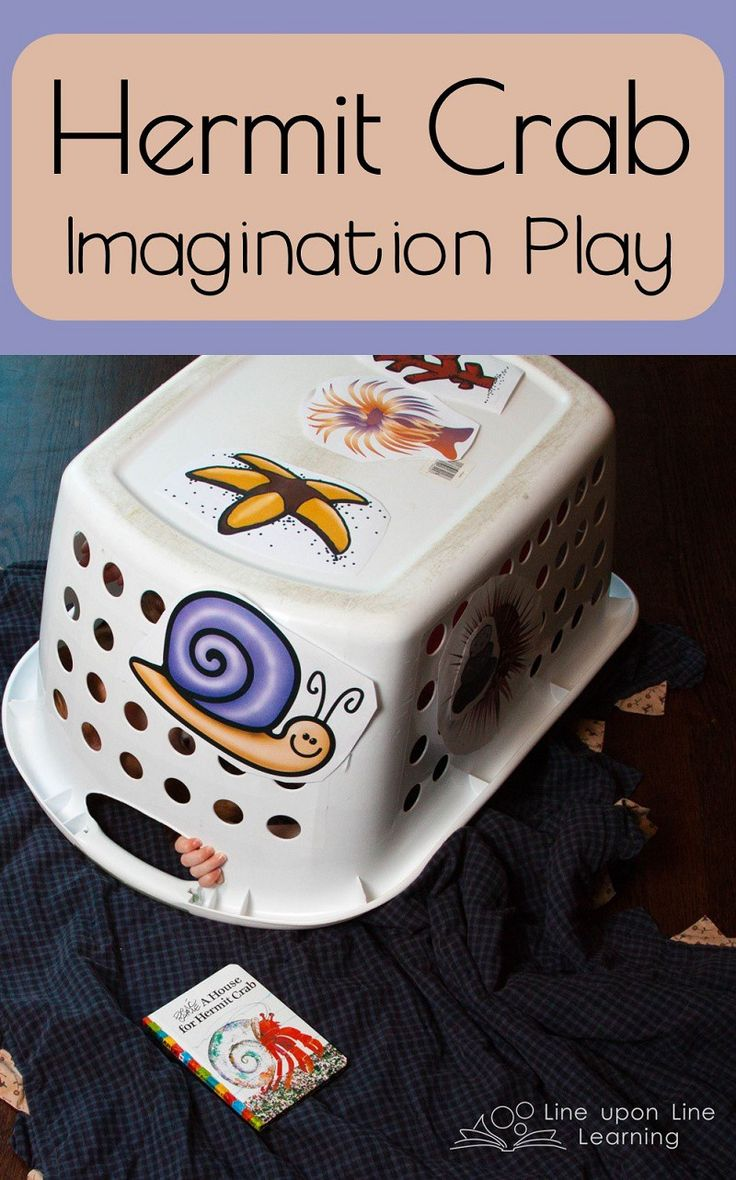With a basket or box, become a crab in this simple hermit crab preschool imagination game. Also practice ordering with A House for Hermit Crab.