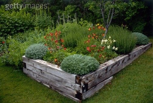 Raised bed timber
