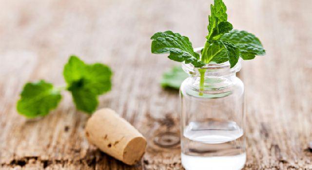 Nausées, maux de ventre, diarrhée… la gastro-entérite fait son retour. Voici 6 huiles essentielles pour calmer les symptômes très rapidement.
