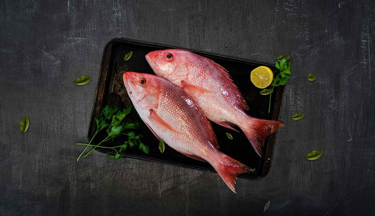 We deliver high quality of fresh fish or seafood to all location of Dubai.If you are searching for fish delivery Dubai, then you contact with us .for more information, visit our website.