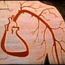 """Hipertensivi, ca să nu """"explodeze"""" inima în somn de la tensiunea oscilantă..."""