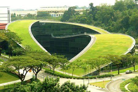 Design and Media at Nanyang Technological University in Singapore . This 5-story facility sweeps a wooded corner of the campus with an organic, vegetated form that blends landscape and structure, nature and high-tech and symbolizes the creativity it houses. The roofs serve as informal gathering spaces challenging linear ideas and stirring perception. The roofs create open space, insulate the building, cool the surrounding air and harvest rainwater for landscaping irrigation.
