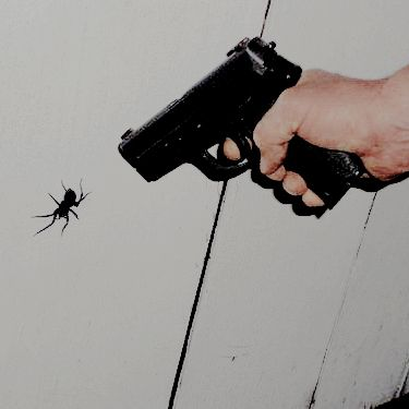 *everyone huddled around, screaming, behind Carter as she points gun to spider*