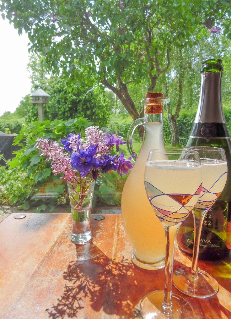 Denne rabarbersaft med vanille er indbegrebet af sommer og hygge i haven. Server den let fortynder over is eller fortyndet med en mousserende hvidvin.