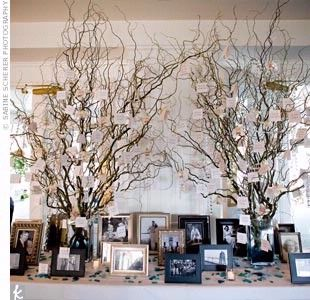 Display of pictures: bride and groom growing up; or wedding photos of family members; a memorial display of past loved ones