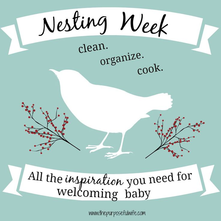 A week's worth of posts to help you get ready for adding a new baby to your family- lots of helpful links, ideas, and other resources!