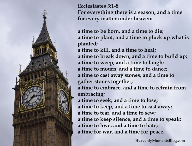 Ecclesiastes 3:1-8 For everything there is a season, and a time for every matter under heaven #Christ #Jesus #Christian #God #church #Bible #season #time #verse #scripture #Ecclesiastes