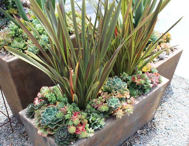 17 best images about garden ideas on pinterest gardens Planters for succulents