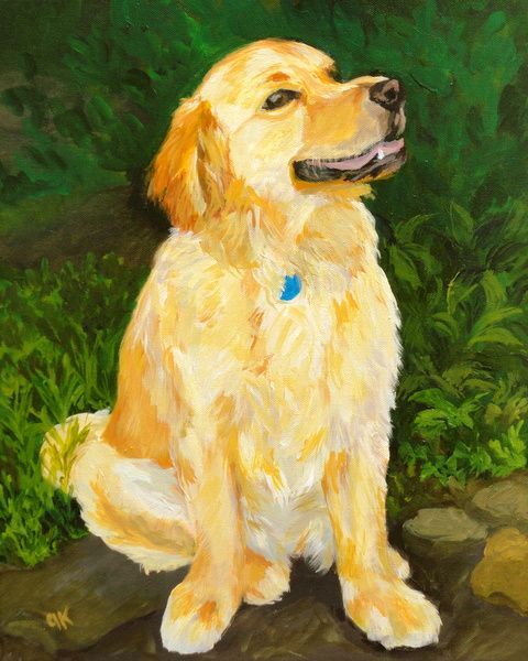 Candy: our Golden Retriever with a sweetness factor of 100%
